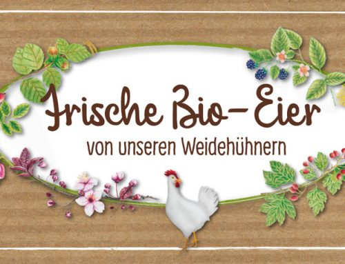 Frische Bio-Eier vom Hasenberghof