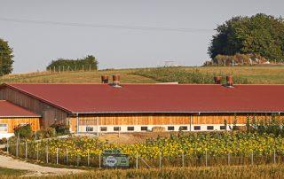 Hühnerstall am Hasenberghof- Seitenansicht