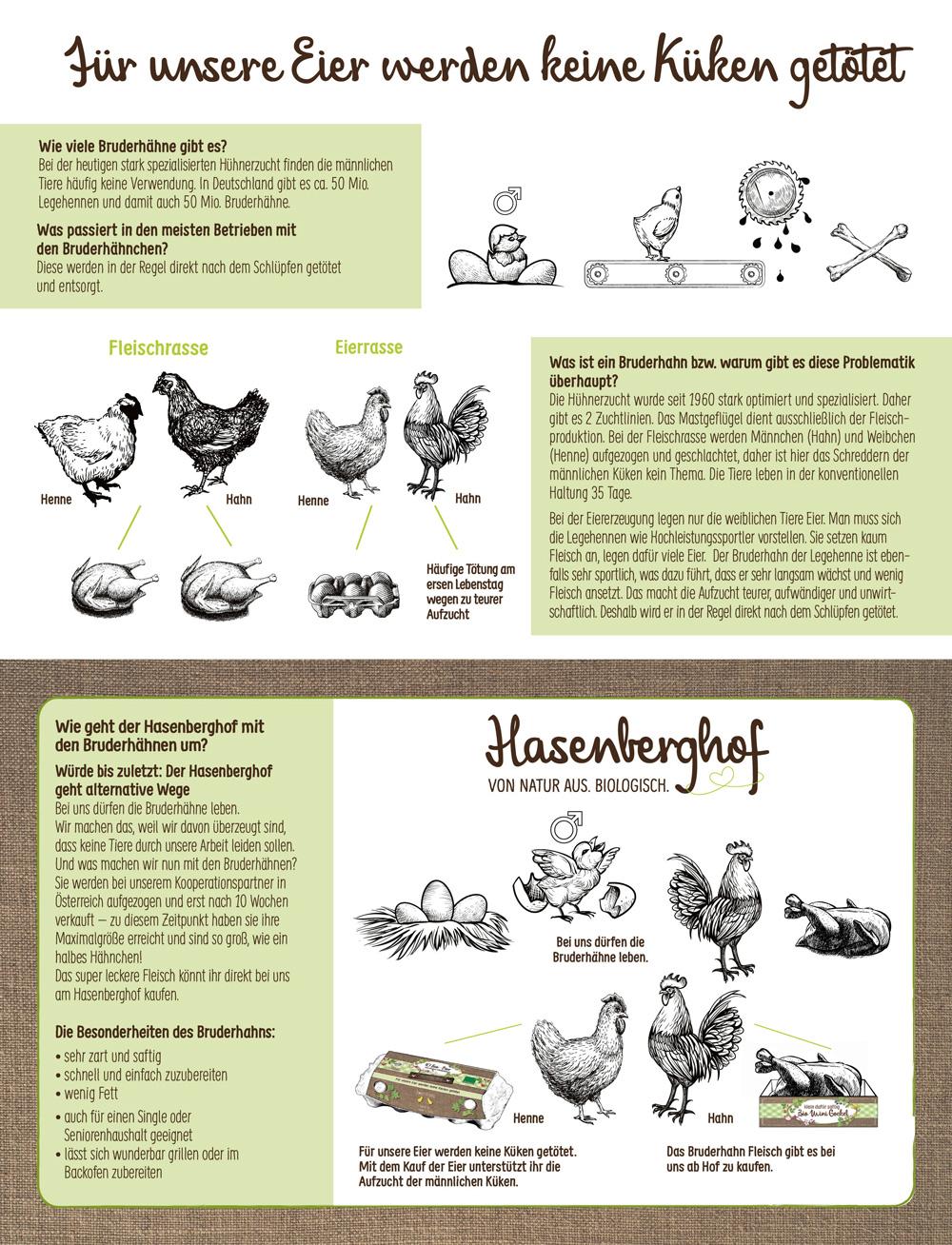 Hasenberghof Bruderhahn Info
