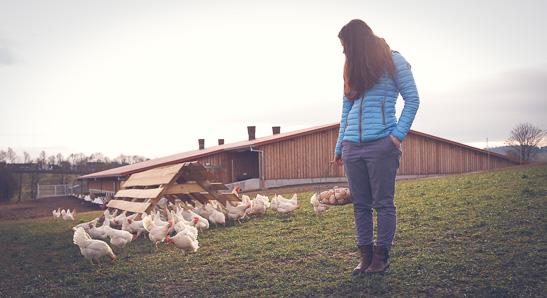 Hofladen - Landwirtschaft entdecken